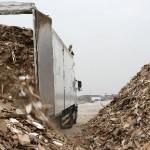 4_9_Hadfields-wood-arriving-2